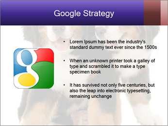 0000060703 PowerPoint Template - Slide 10