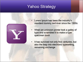 0000060703 PowerPoint Template - Slide 11