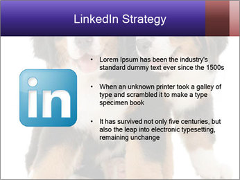 0000060703 PowerPoint Template - Slide 12