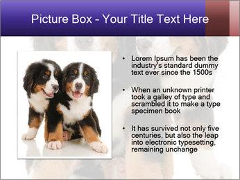 0000060703 PowerPoint Template - Slide 13