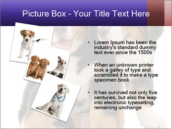 0000060703 PowerPoint Template - Slide 17