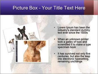 0000060703 PowerPoint Template - Slide 20