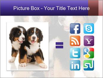0000060703 PowerPoint Template - Slide 21