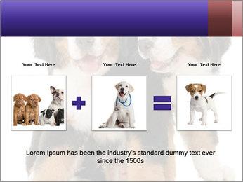 0000060703 PowerPoint Template - Slide 22