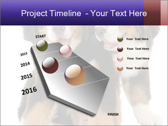 0000060703 PowerPoint Template - Slide 26