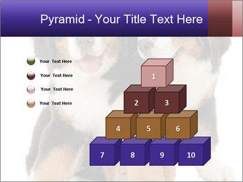 0000060703 PowerPoint Template - Slide 31