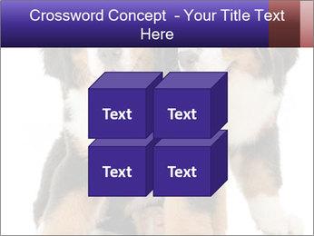 0000060703 PowerPoint Template - Slide 39