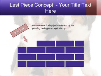 0000060703 PowerPoint Template - Slide 46