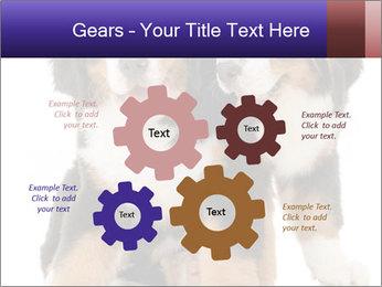 0000060703 PowerPoint Template - Slide 47