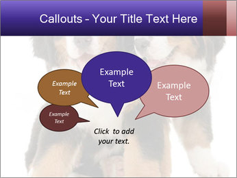 0000060703 PowerPoint Template - Slide 73