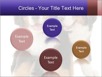 0000060703 PowerPoint Template - Slide 77