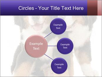 0000060703 PowerPoint Template - Slide 79