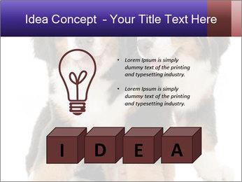 0000060703 PowerPoint Template - Slide 80