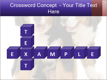 0000060703 PowerPoint Template - Slide 82