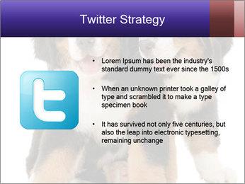 0000060703 PowerPoint Template - Slide 9