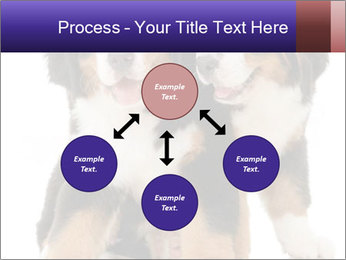 0000060703 PowerPoint Template - Slide 91