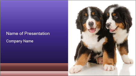 0000060703 PowerPoint Template