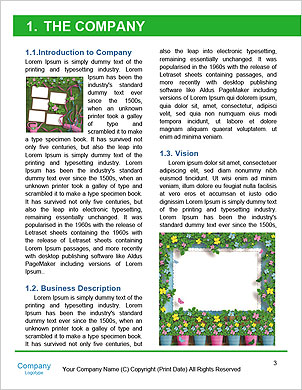0000060706 Word Template - Page 3