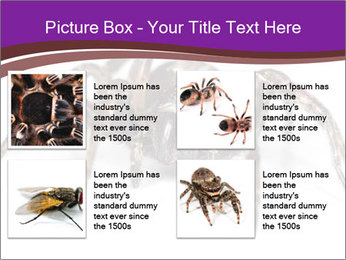 0000060712 PowerPoint Template - Slide 14