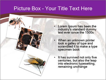 0000060712 PowerPoint Template - Slide 17
