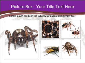 0000060712 PowerPoint Template - Slide 19