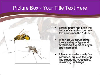 0000060712 PowerPoint Template - Slide 20