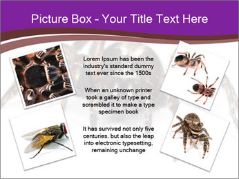 0000060712 PowerPoint Template - Slide 24