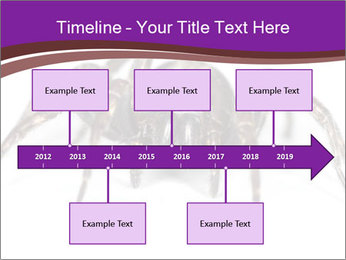 0000060712 PowerPoint Template - Slide 28