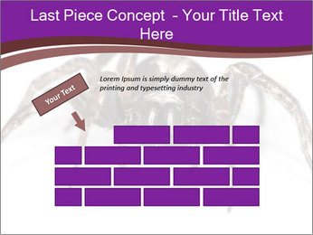 0000060712 PowerPoint Template - Slide 46