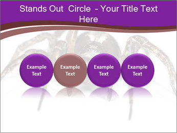 0000060712 PowerPoint Template - Slide 76