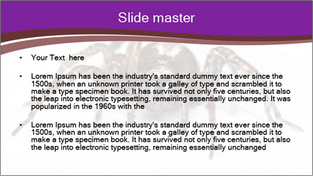 0000060712 PowerPoint Template - Slide 2