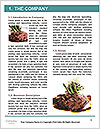 0000060714 Word Template - Page 3