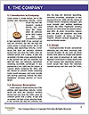 0000060718 Word Template - Page 3