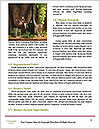 0000060726 Word Templates - Page 4