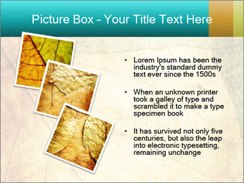 0000060733 PowerPoint Templates - Slide 17