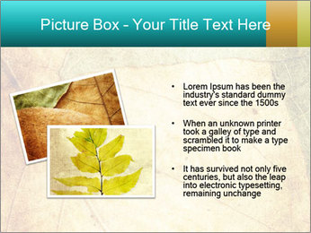 0000060733 PowerPoint Templates - Slide 20
