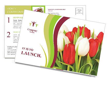 0000060736 Postcard Template