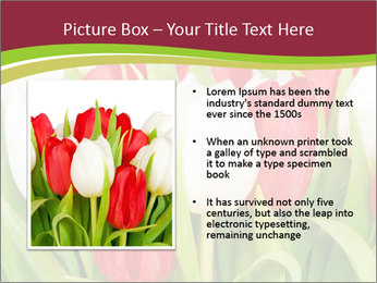 0000060736 PowerPoint Templates - Slide 13