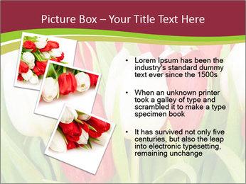 0000060736 PowerPoint Templates - Slide 17