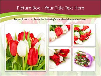 0000060736 PowerPoint Templates - Slide 19