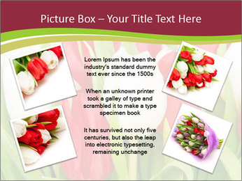 0000060736 PowerPoint Templates - Slide 24