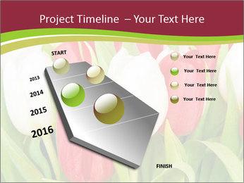 0000060736 PowerPoint Templates - Slide 26