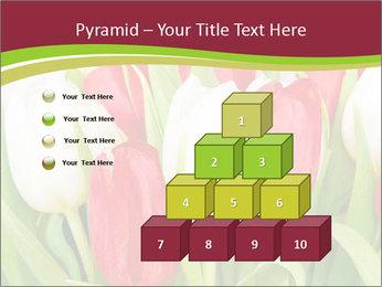 0000060736 PowerPoint Templates - Slide 31