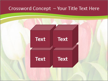 0000060736 PowerPoint Templates - Slide 39