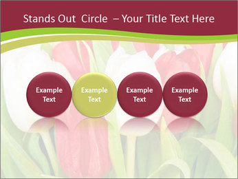 0000060736 PowerPoint Templates - Slide 76