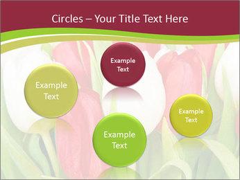 0000060736 PowerPoint Templates - Slide 77