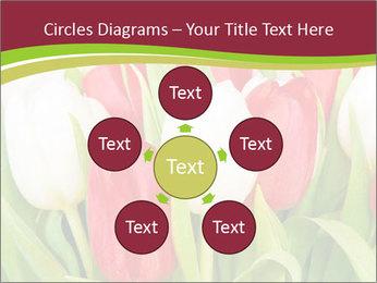 0000060736 PowerPoint Templates - Slide 78