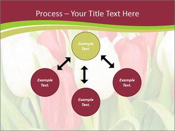 0000060736 PowerPoint Templates - Slide 91