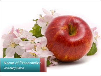0000060739 PowerPoint Template - Slide 1