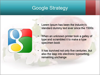 0000060739 PowerPoint Template - Slide 10